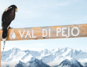 Val di Pejo